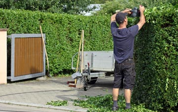 professional Staines hedge cutting services