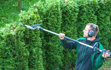 Staines hedge trimming costs