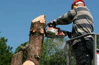 Staines felling services