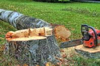 free Staines tree felling quotes