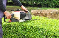 Staines hedge trimming services
