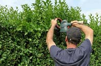 free Staines hedge trimming quotes