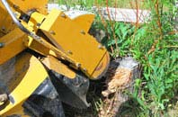 Staines tree stump grinding services